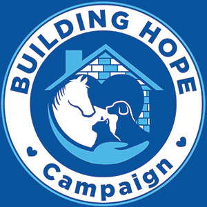 building hope capital campaign logo