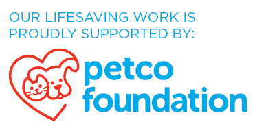 Petco Foundation Site Badge - White (1)